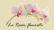 la rosée fleuriste