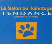 le salon toilettage tendance